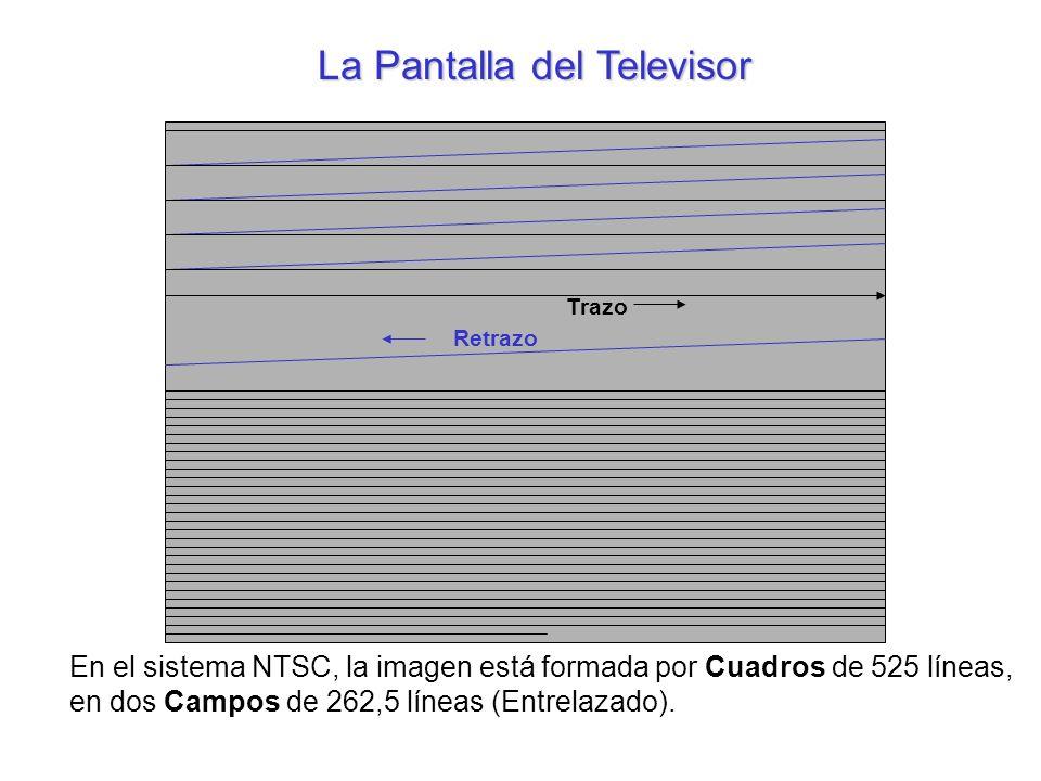 Retrazo Trazo En el sistema NTSC, la imagen está formada por Cuadros de 525 líneas, en dos Campos de 262,5 líneas (Entrelazado). La Pantalla del Telev