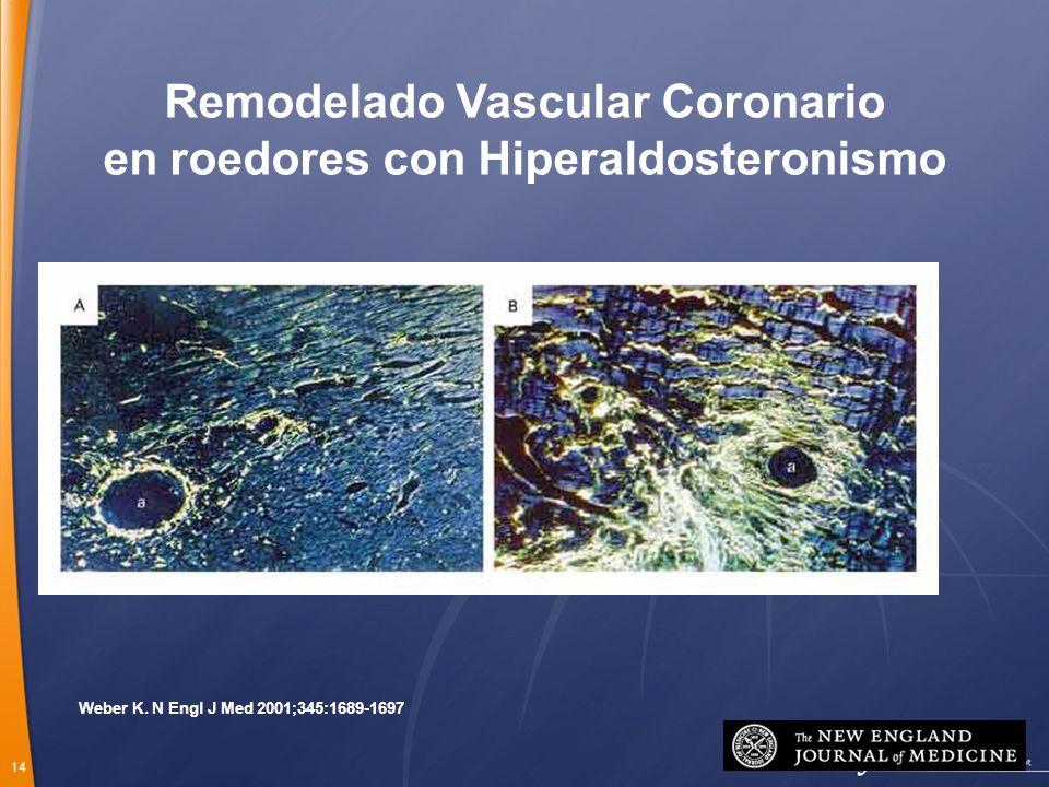 14 Weber K. N Engl J Med 2001;345:1689-1697 Remodelado Vascular Coronario en roedores con Hiperaldosteronismo