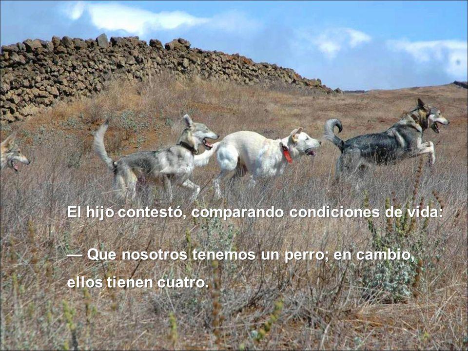 El hijo contestó, comparando condiciones de vida: Que nosotros tenemos un perro; en cambio, ellos tienen cuatro. Que nosotros tenemos un perro; en cam