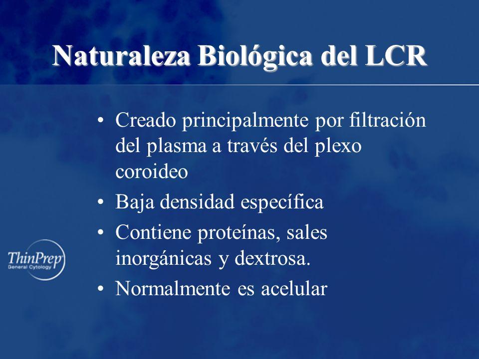 Naturaleza Biológica del LCR Creado principalmente por filtración del plasma a través del plexo coroideo Baja densidad específica Contiene proteínas,