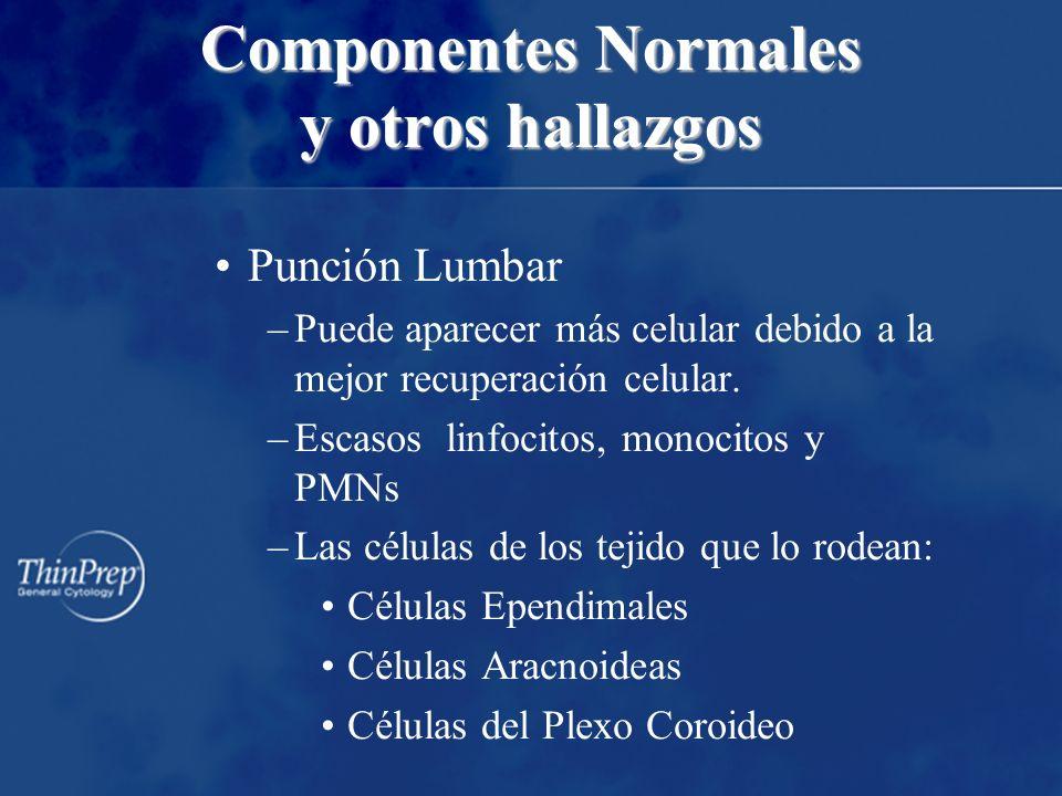Componentes Normales y otros hallazgos Punción Lumbar –Puede aparecer más celular debido a la mejor recuperación celular. –Escasos linfocitos, monocit
