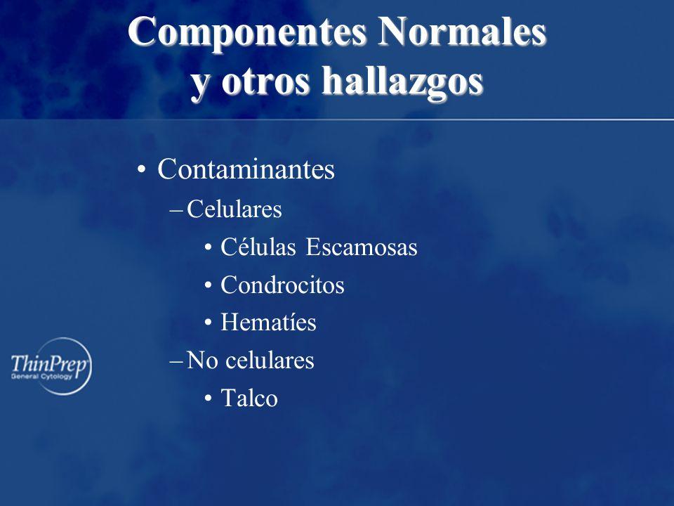 Contaminantes –Celulares Células Escamosas Condrocitos Hematíes –No celulares Talco