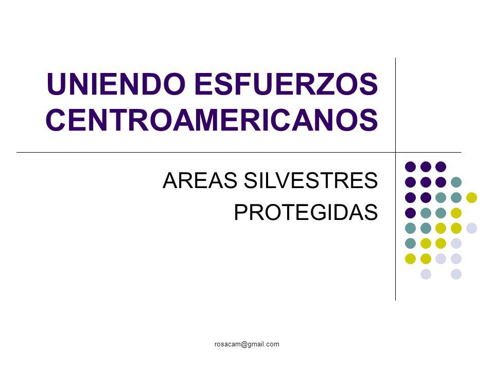 rosacam@gmail.com UNIENDO ESFUERZOS CENTROAMERICANOS AREAS SILVESTRES PROTEGIDAS