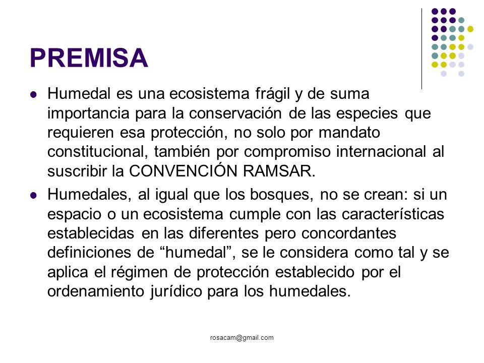 PREMISA Humedal es una ecosistema frágil y de suma importancia para la conservación de las especies que requieren esa protección, no solo por mandato