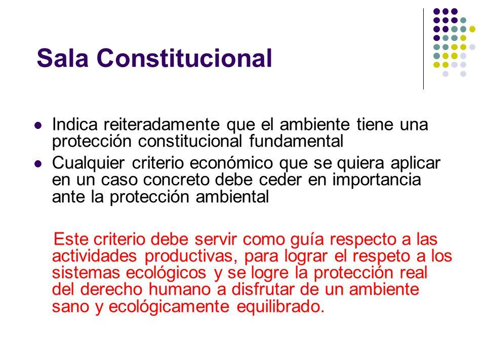 Sala Constitucional Indica reiteradamente que el ambiente tiene una protección constitucional fundamental Cualquier criterio económico que se quiera a