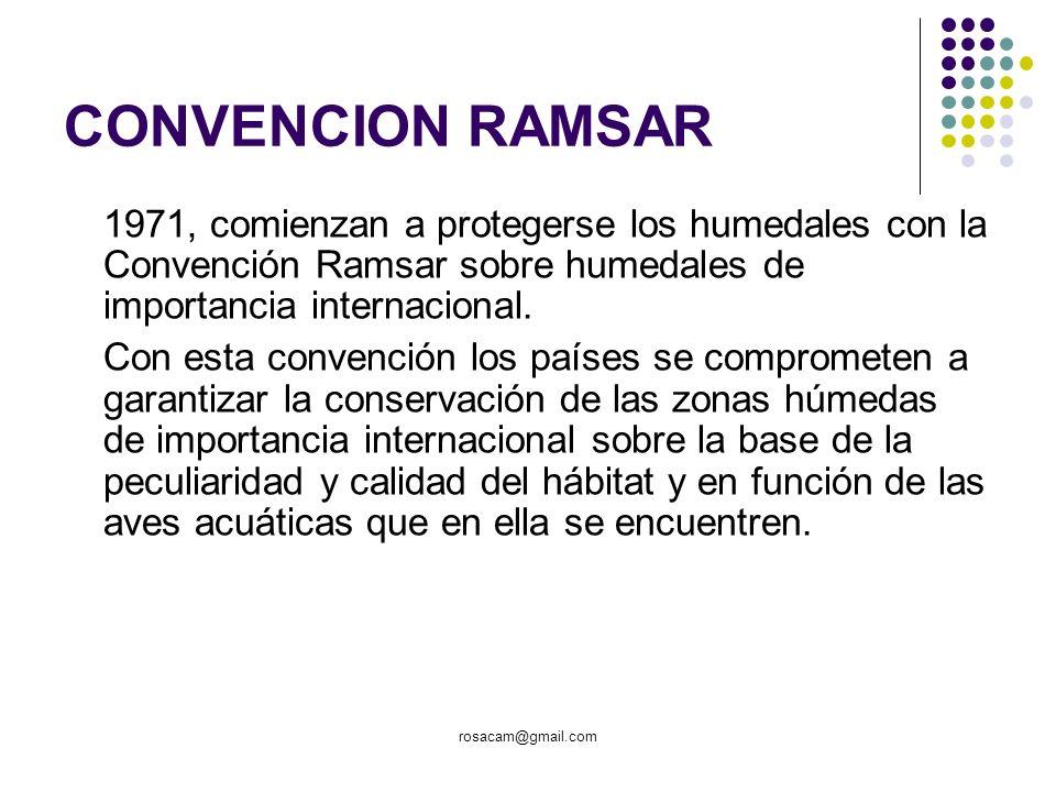 rosacam@gmail.com CONVENCION RAMSAR 1971, comienzan a protegerse los humedales con la Convención Ramsar sobre humedales de importancia internacional.