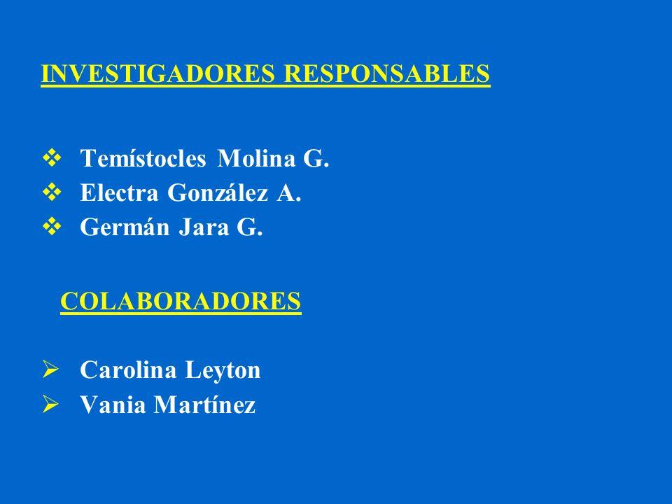 INVESTIGADORES RESPONSABLES Temístocles Molina G. Electra González A. Germán Jara G. COLABORADORES Carolina Leyton Vania Martínez