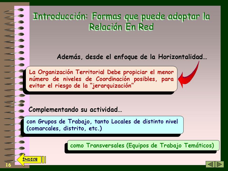 15 ÍNDICE Introducción: Formas que puede adoptar la Relación En Red La Organización Territorial (Local) y la Organización Transversal (Global) se supe