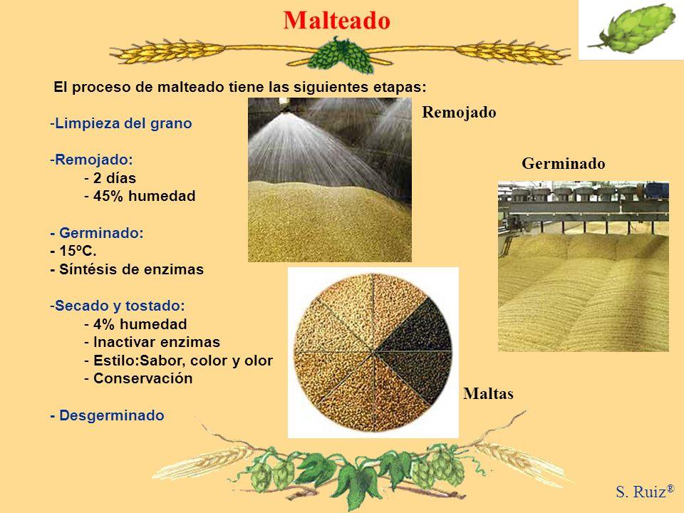 Malteado El proceso de malteado tiene las siguientes etapas: -Limpieza del grano -Remojado: - 2 días - 45% humedad - Germinado: - 15ºC. - Síntésis de