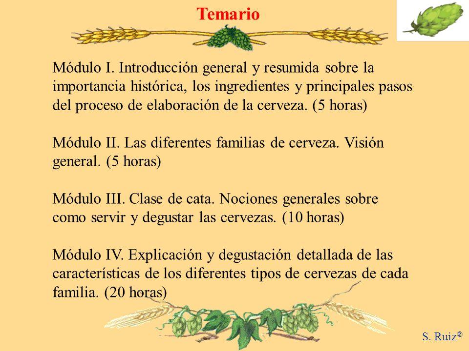 Temario S.Ruiz ® Módulo I.