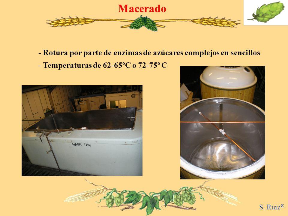 Macerado - Rotura por parte de enzimas de azúcares complejos en sencillos - Temperaturas de 62-65ºC o 72-75º C S. Ruiz ®