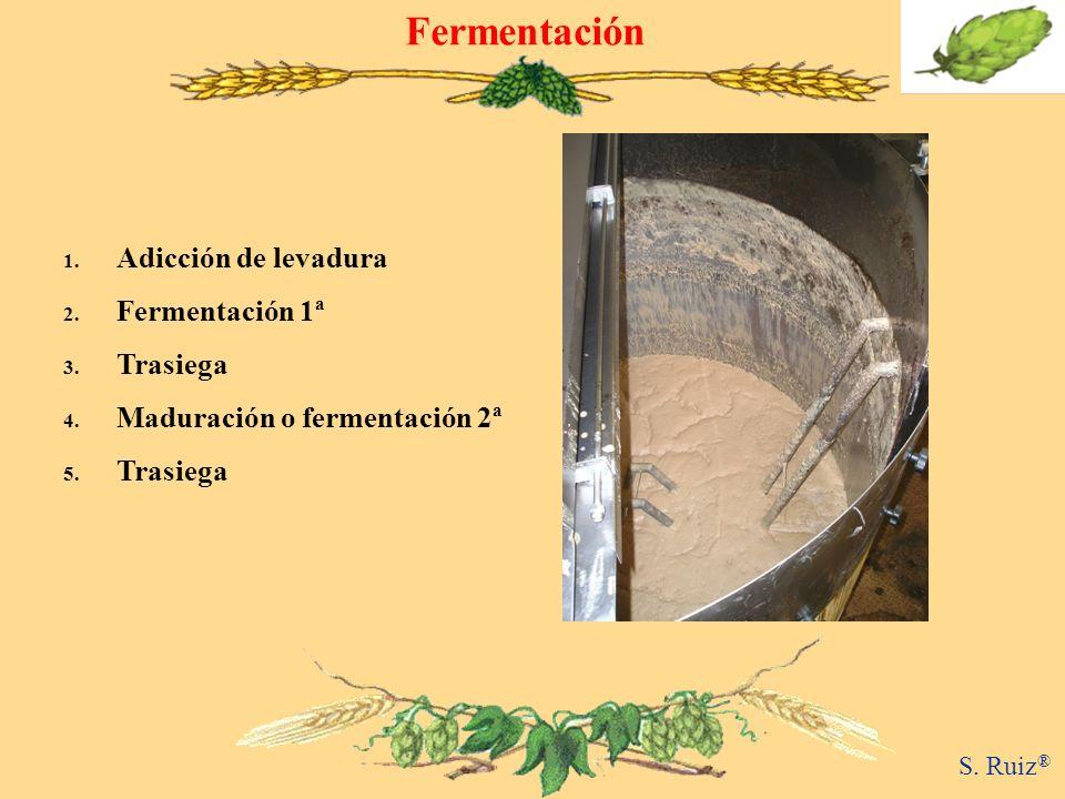 Fermentación 1. Adicción de levadura 2. Fermentación 1ª 3. Trasiega 4. Maduración o fermentación 2ª 5. Trasiega S. Ruiz ®