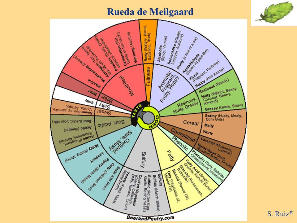 Rueda de Meilgaard S. Ruiz ®