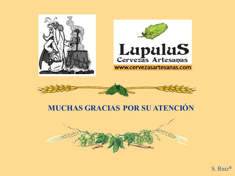 MUCHAS GRACIAS POR SU ATENCIÓN S. Ruiz ®