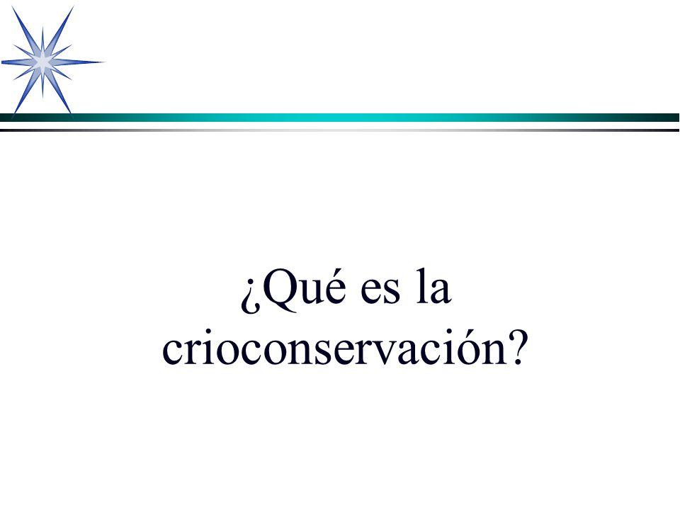 ¿Qué es la crioconservación?