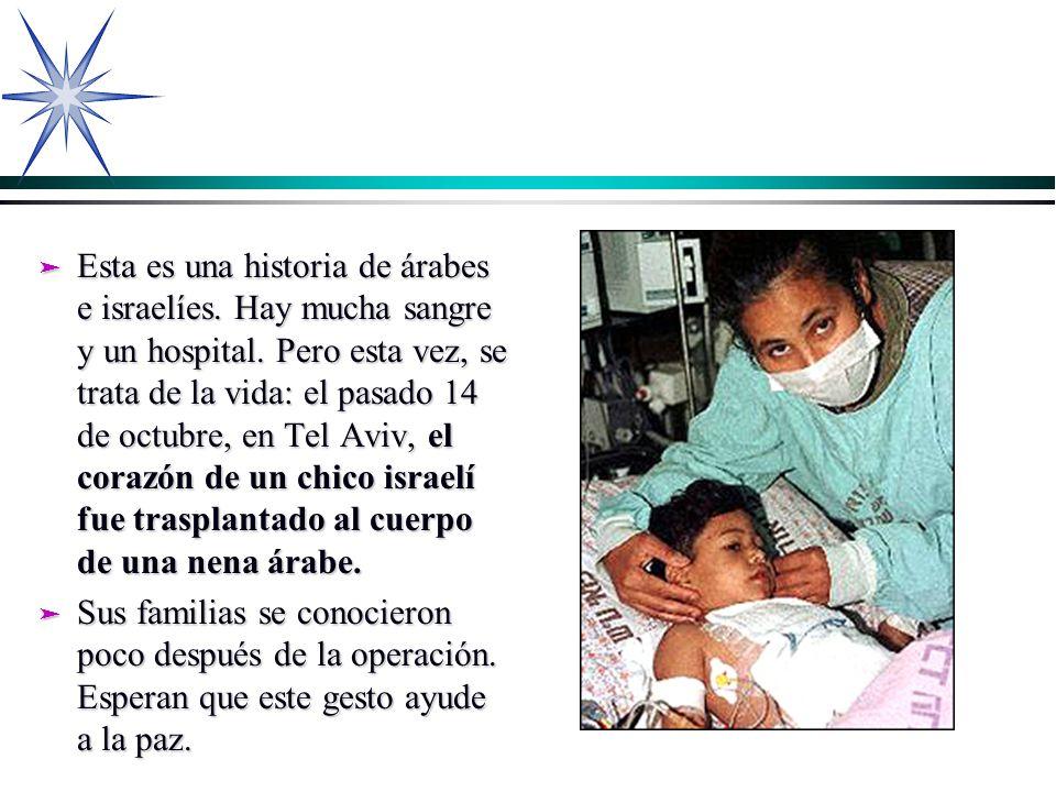 ä Esta es una historia de árabes e israelíes. Hay mucha sangre y un hospital. Pero esta vez, se trata de la vida: el pasado 14 de octubre, en Tel Aviv