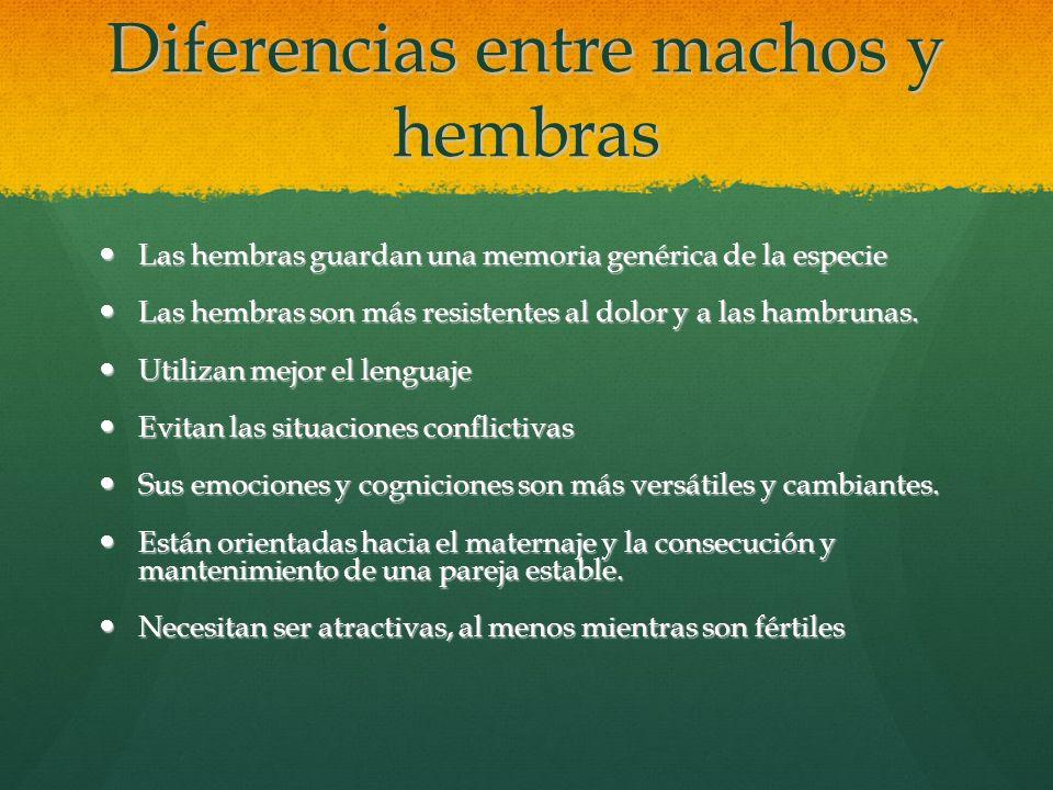 Diferencias entre machos y hembras Las hembras guardan una memoria genérica de la especie Las hembras guardan una memoria genérica de la especie Las h