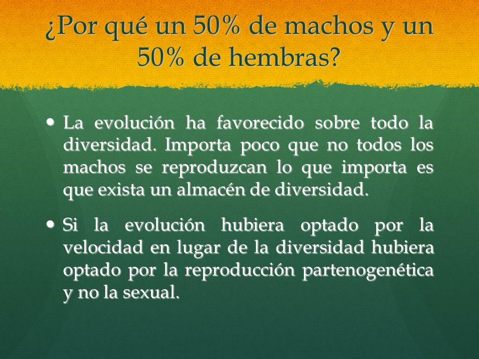¿Por qué un 50% de machos y un 50% de hembras? La La evolución ha favorecido sobre todo la diversidad. Importa poco que no todos los machos se reprodu