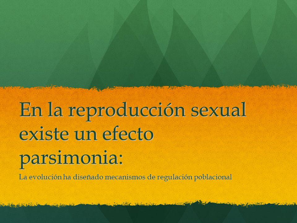 En la reproducción sexual existe un efecto parsimonia: La evolución ha diseñado mecanismos de regulación poblacional