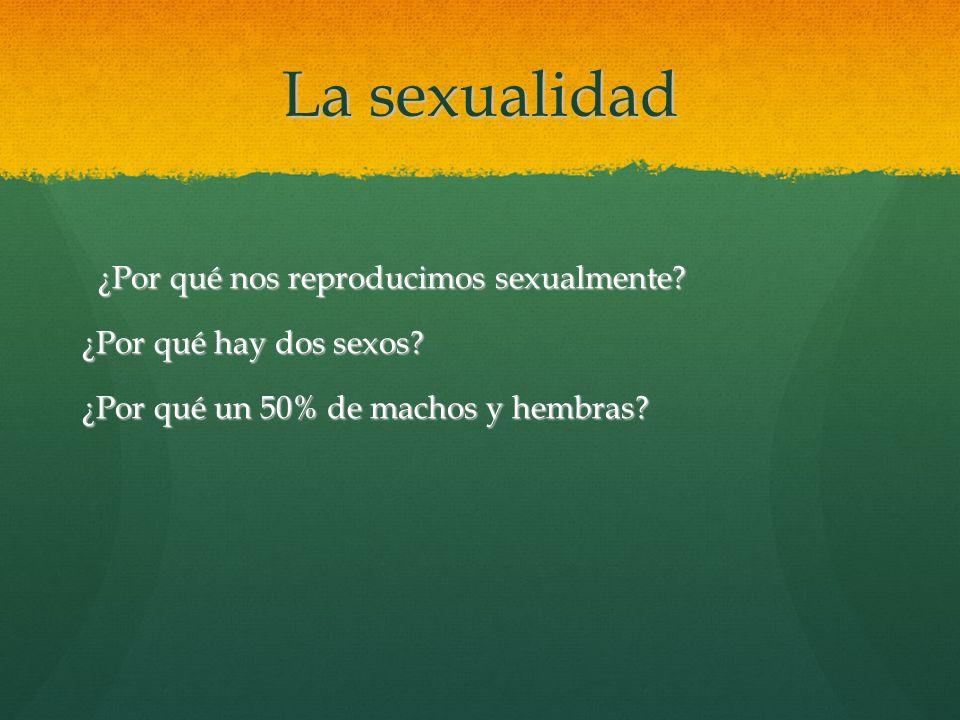 La sexualidad ¿Por qué nos reproducimos sexualmente? ¿Por qué nos reproducimos sexualmente? ¿Por qué hay dos sexos? ¿Por qué un 50% de machos y hembra