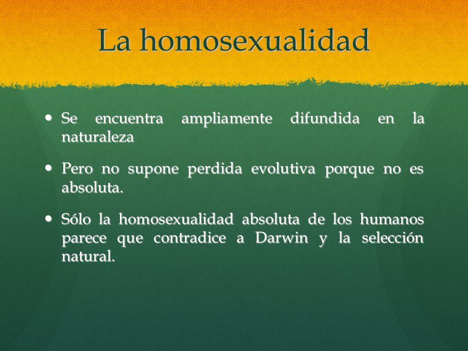 La homosexualidad Se encuentra ampliamente difundida en la naturaleza Se encuentra ampliamente difundida en la naturaleza Pero no supone perdida evolu