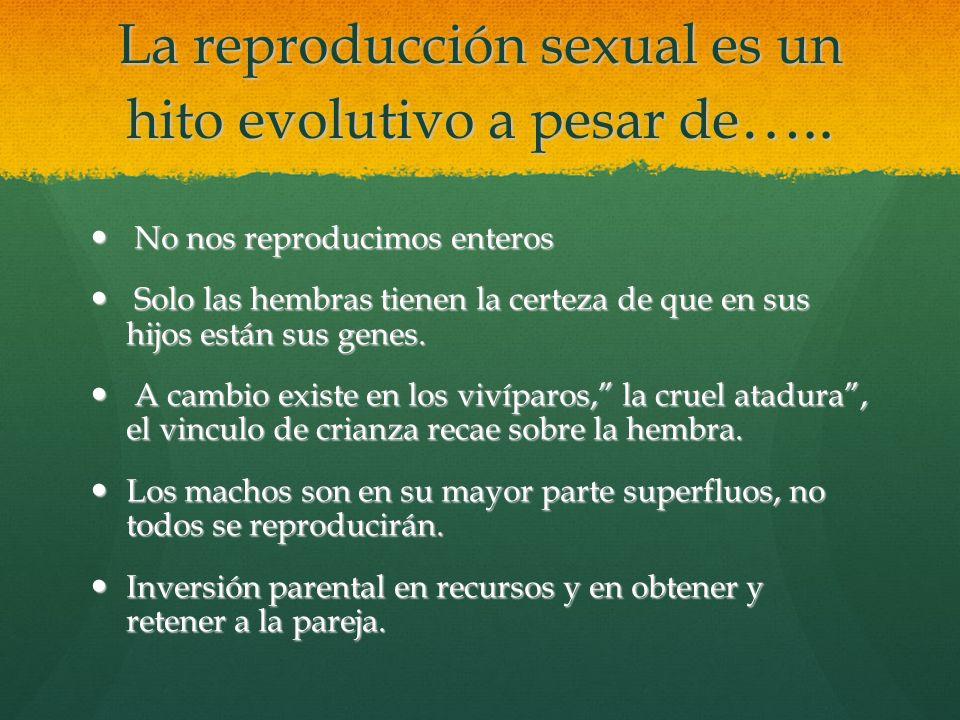 La reproducción sexual es un hito evolutivo a pesar de ….. No nos reproducimos enteros Solo las hembras tienen la certeza de que en sus hijos están su