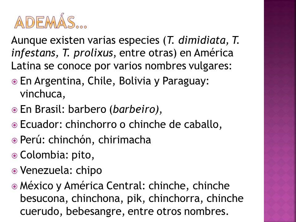 Como es una enfermedad que persiste durante años en un lugar determinado, por ejemplo en Salta (Argentina) siempre hubo casos de esta enfermedad considerada como endémica, propia de la región.