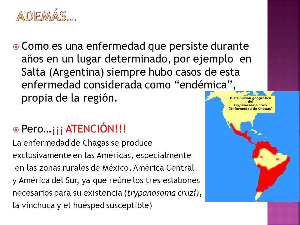 Distribución de vectores en América Latina de la enfermedad de Chagas En este trabajo nos concentramos en la vinchuca, pero hay seis especies más en nuestro continente.