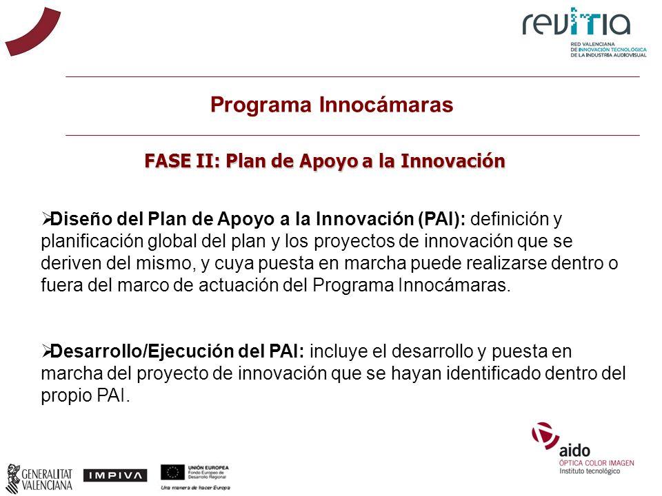 Programa Innocámaras FASE II: Plan de Apoyo a la Innovación Diseño del Plan de Apoyo a la Innovación (PAI): definición y planificación global del plan