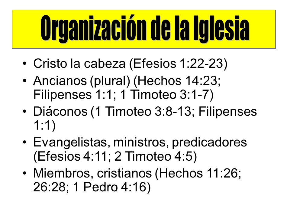 Cristo la cabeza (Efesios 1:22-23) Ancianos (plural) (Hechos 14:23; Filipenses 1:1; 1 Timoteo 3:1-7) Diáconos (1 Timoteo 3:8-13; Filipenses 1:1) Evang