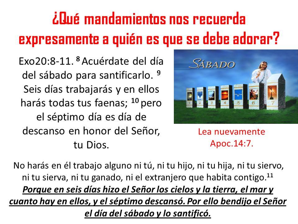 ¿Qué mandamientos nos recuerda expresamente a quién es que se debe adorar? Exo20:8-11. 8 Acuérdate del día del sábado para santificarlo. 9 Seis días t