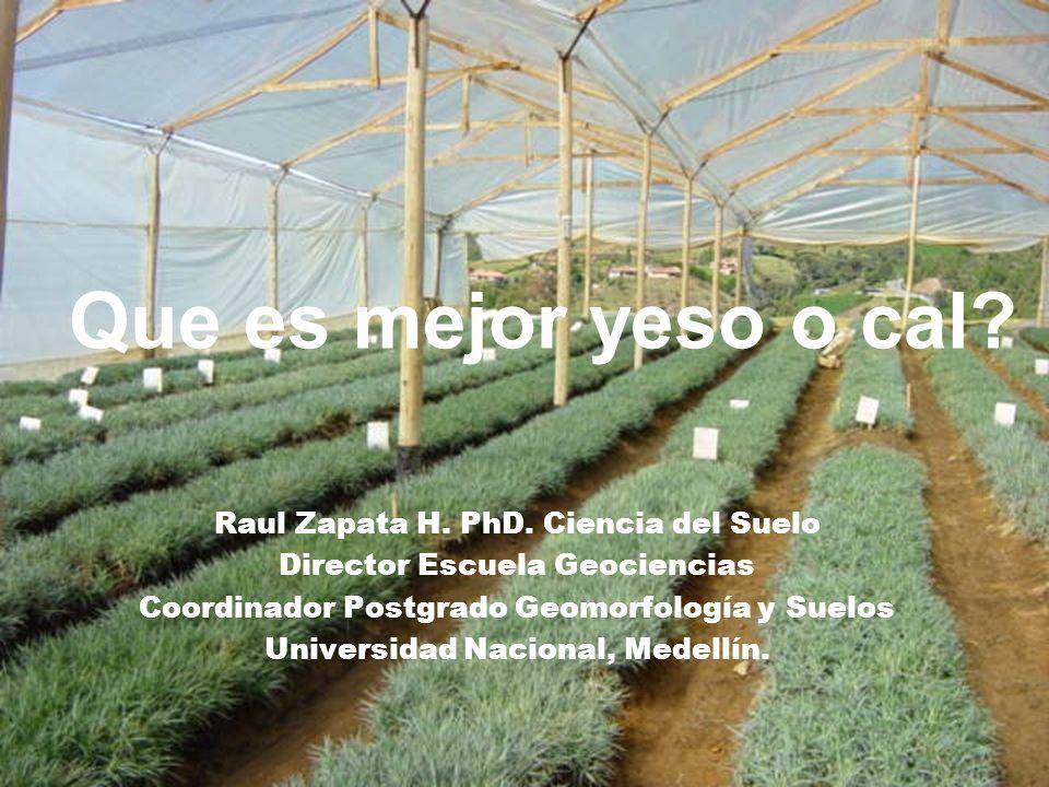 Que es mejor yeso o cal? Raul Zapata H. PhD. Ciencia del Suelo Director Escuela Geociencias Coordinador Postgrado Geomorfología y Suelos Universidad N