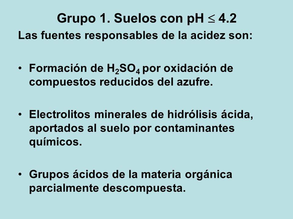 Grupo 1. Suelos con pH 4.2 Las fuentes responsables de la acidez son: Formación de H 2 SO 4 por oxidación de compuestos reducidos del azufre. Electrol