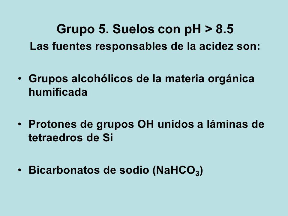 Grupo 5. Suelos con pH > 8.5 Las fuentes responsables de la acidez son: Grupos alcohólicos de la materia orgánica humificada Protones de grupos OH uni