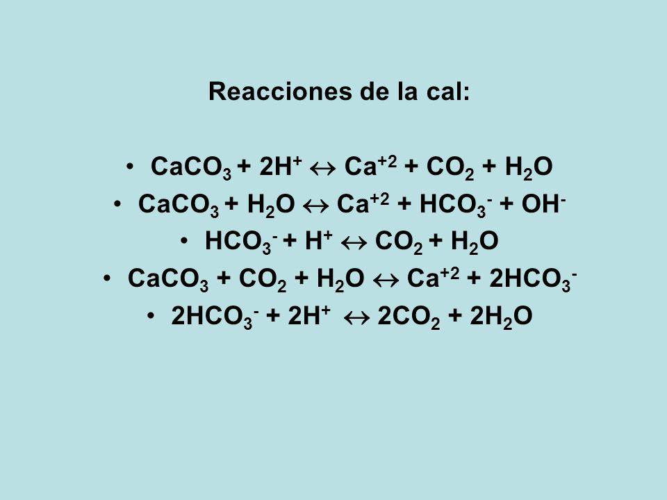 Reacciones de la cal: CaCO 3 + 2H + Ca +2 + CO 2 + H 2 O CaCO 3 + H 2 O Ca +2 + HCO 3 - + OH - HCO 3 - + H + CO 2 + H 2 O CaCO 3 + CO 2 + H 2 O Ca +2
