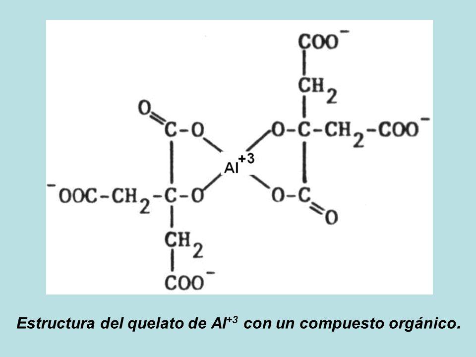 Estructura del quelato de Al +3 con un compuesto orgánico.