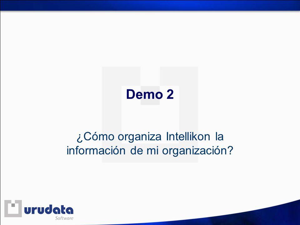 Demo 2 ¿Cómo organiza Intellikon la información de mi organización?