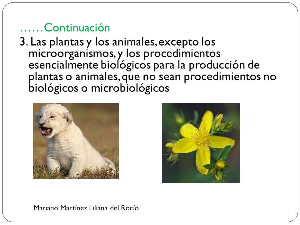……Continuación 3. Las plantas y los animales, excepto los microorganismos, y los procedimientos esencialmente biológicos para la producción de plantas