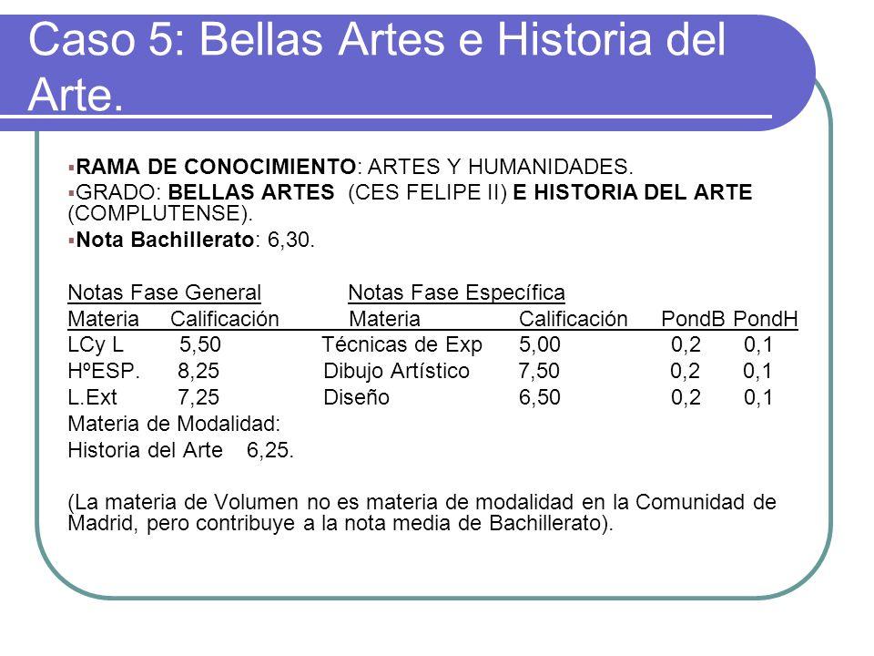 Caso 5: Bellas Artes e Historia del Arte. RAMA DE CONOCIMIENTO: ARTES Y HUMANIDADES. GRADO: BELLAS ARTES (CES FELIPE II) E HISTORIA DEL ARTE (COMPLUTE