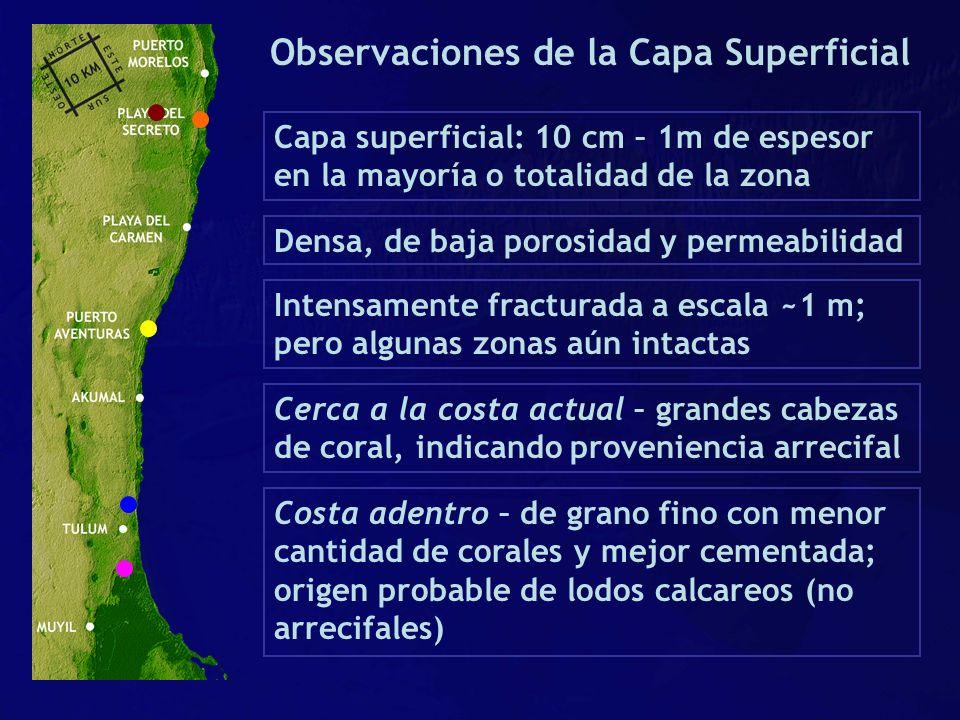 Observaciones de la Capa Superficial Capa superficial: 10 cm – 1m de espesor en la mayoría o totalidad de la zona Densa, de baja porosidad y permeabil