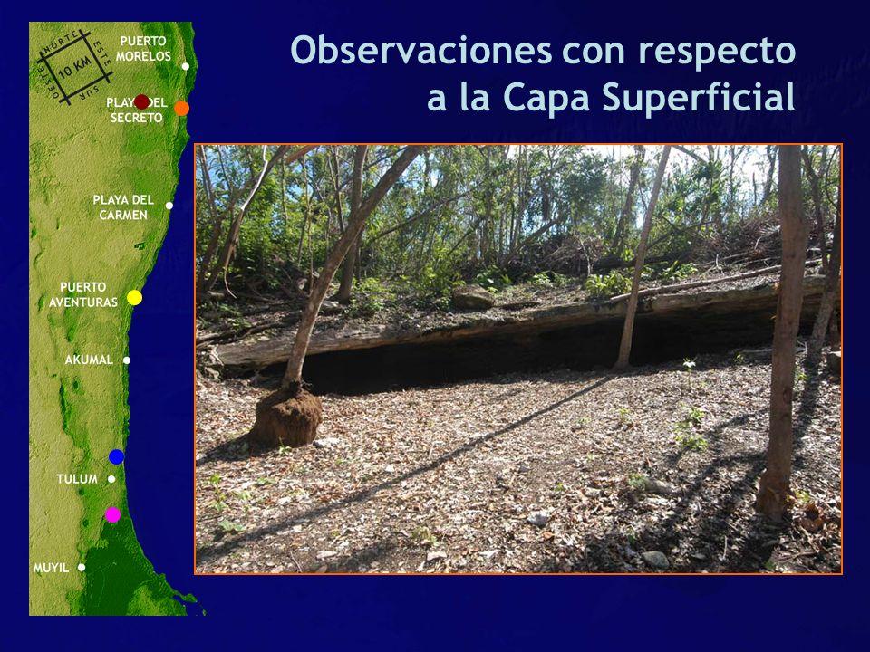 Observaciones con respecto a la Capa Superficial