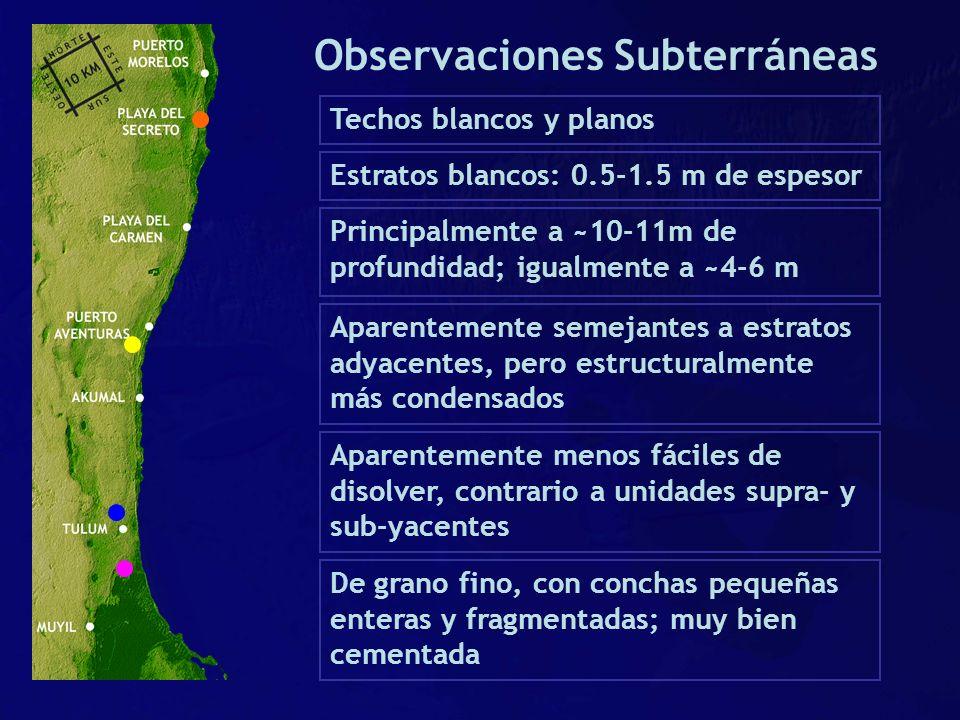 Observaciones Subterráneas Techos blancos y planos Aparentemente semejantes a estratos adyacentes, pero estructuralmente más condensados Aparentemente