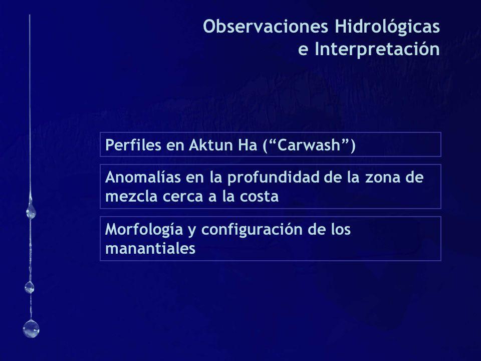 Observaciones Hidrológicas e Interpretación Perfiles en Aktun Ha (Carwash) Anomalías en la profundidad de la zona de mezcla cerca a la costa Morfologí