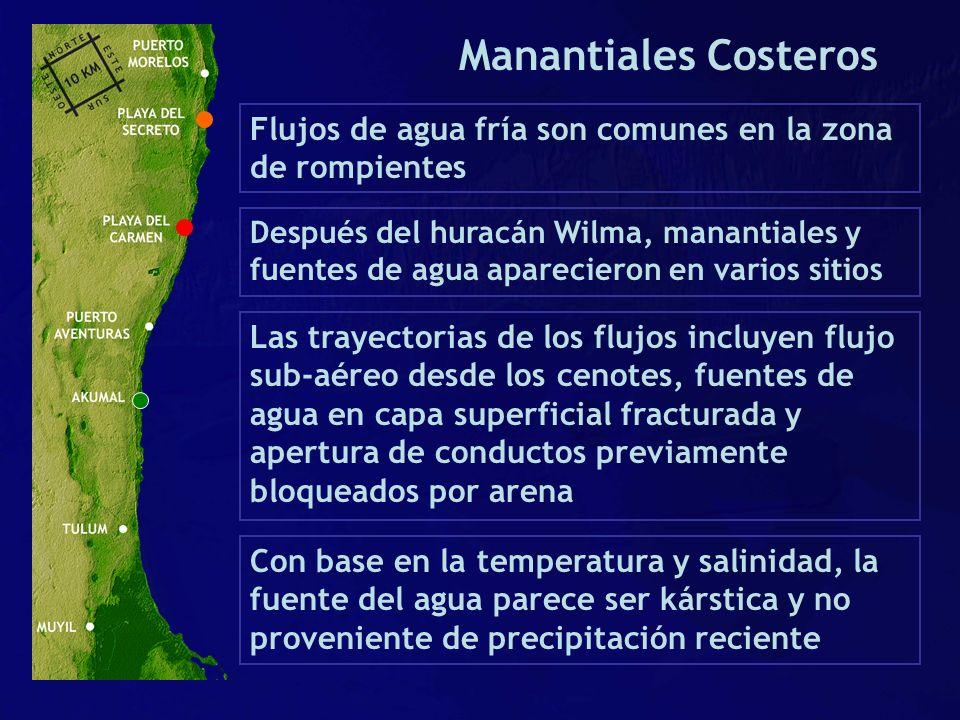 Flujos de agua fría son comunes en la zona de rompientes Las trayectorias de los flujos incluyen flujo sub-aéreo desde los cenotes, fuentes de agua en