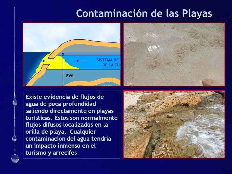 Contaminación de las Playas Existe evidencia de flujos de agua de poca profundidad saliendo directamente en playas turísticas. Estos son normalmente f