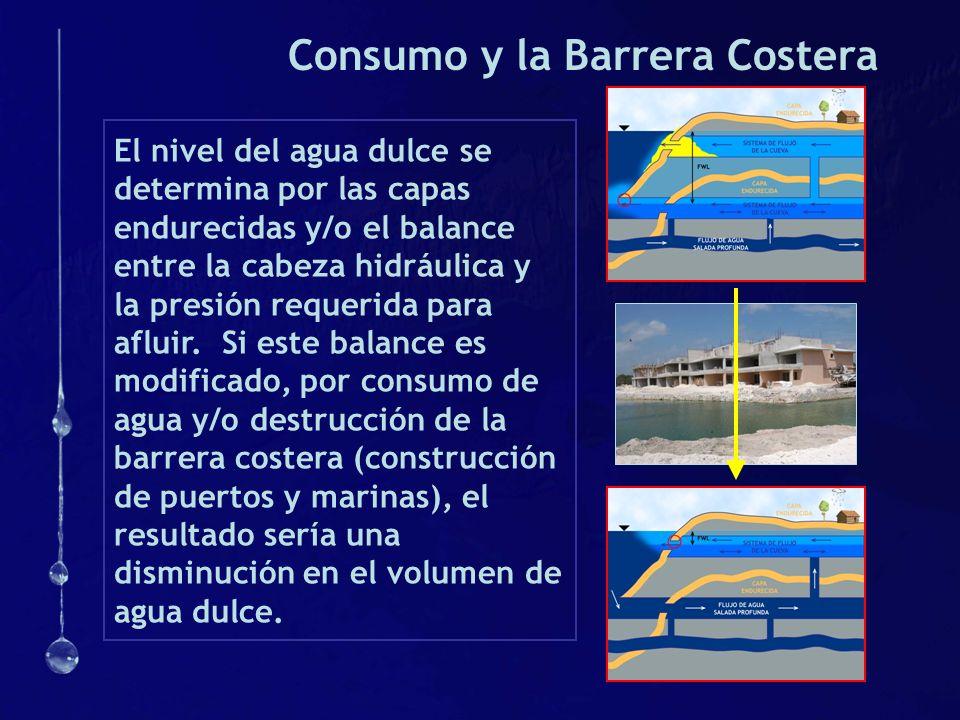 Consumo y la Barrera Costera El nivel del agua dulce se determina por las capas endurecidas y/o el balance entre la cabeza hidráulica y la presión req
