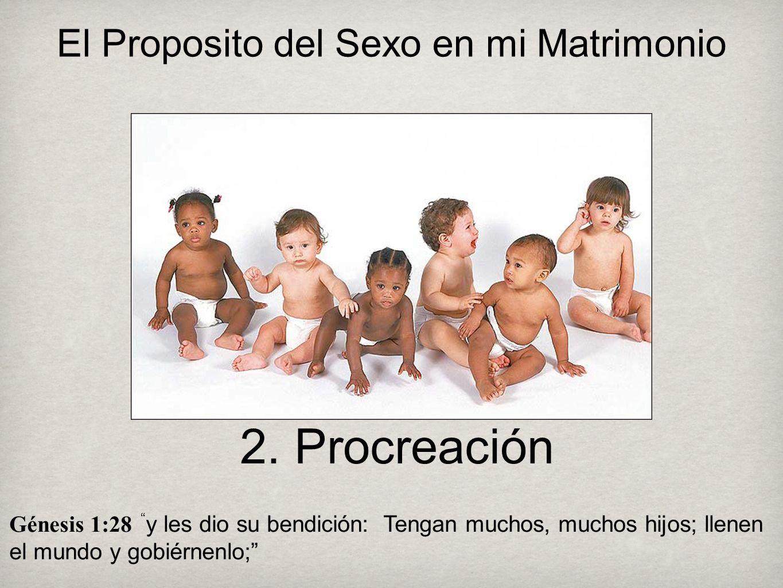 2. Procreación Génesis 1:28 y les dio su bendición: Tengan muchos, muchos hijos; llenen el mundo y gobiérnenlo; El Proposito del Sexo en mi Matrimonio