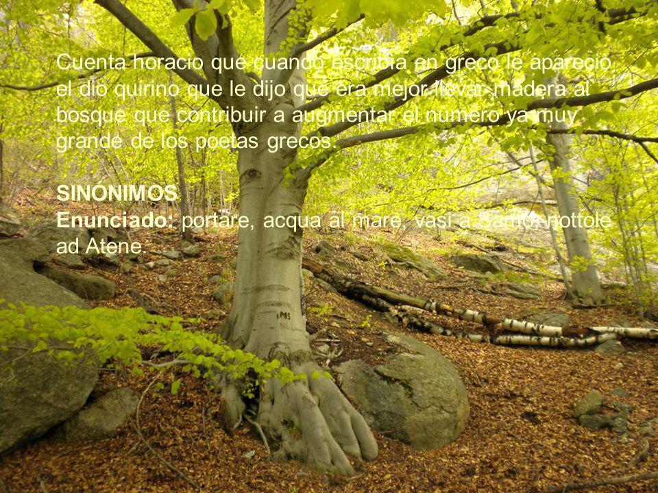 Cuenta horacio que cuando escribìa en greco le apareciò el dio quirino que le dijo que era mejor llevar madera al bosque que contribuir a augmentar el