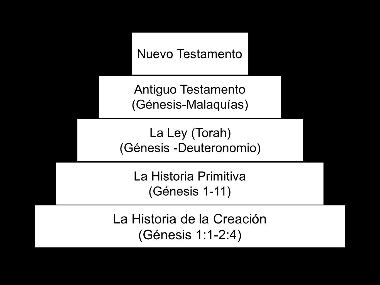 60 La Historia de la Creación (Génesis 1:1-2:4) La Historia Primitiva (Génesis 1-11) La Ley (Torah) (Génesis -Deuteronomio) Antiguo Testamento (Génesi