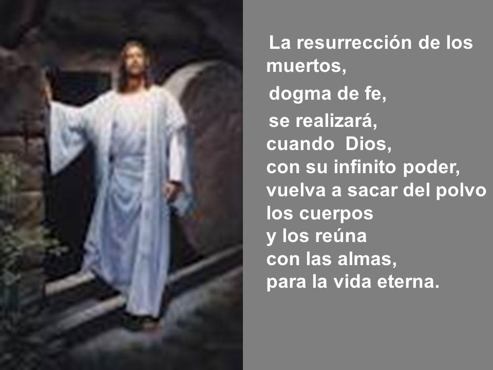 La resurrección de los muertos, dogma de fe, se realizará, cuando Dios, con su infinito poder, vuelva a sacar del polvo los cuerpos y los reúna con la